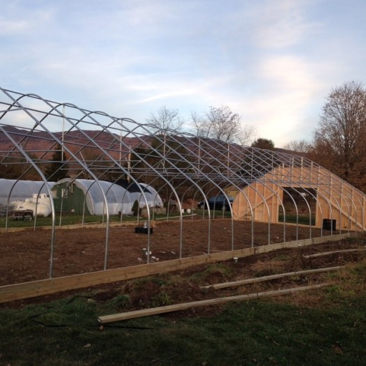 Whats Growing On: New Cold Frame Greenhouse